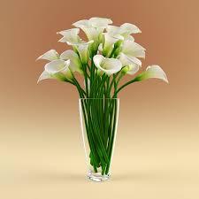 Beetle Flower Vase Flower Vases Ideas Home Decorations