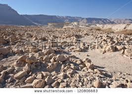 stone desert stone desert on west bank jordan stock photo 120806683 shutterstock