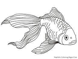 realistic blue tang fish coloring pages coloring