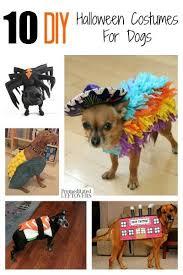 Puppy Halloween Costumes 25 Pet Costumes Dogs Ideas Halloween