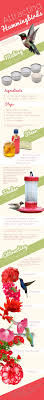 Jewel Box Window Hummingbird Feeder Best 10 Humming Bird Feeders Ideas On Pinterest Hummingbird