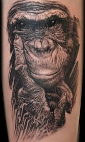 tattoo nightmares gus scratches back 48 best tattoo nightmare chimpanzee tattoo images on pinterest