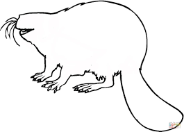 beaver outline coloring page free printable coloring pages
