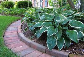 landscaping edging ideas brick landscape edging ideas for your