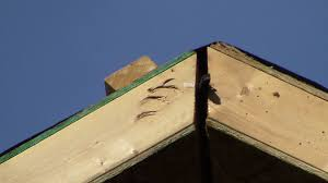 Structural Insulated Panels Homes Trouble On The Roof Greenbuildingadvisor Com