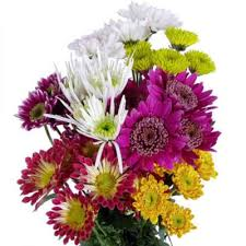 murfreesboro flower shop bulk flowers online near me sam s club
