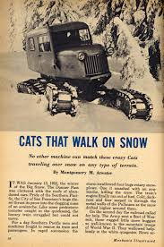 Wildfire Car For Sale by Cats That Walk On Snow Hemmings Daily