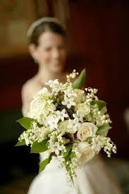 Stephanotis Flower Flowers Stephanotis Sweet Fragrance And Elegant Simplicity