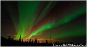 alaska aurora lights tour northern lights aurora borealis over fairbanks alaska alaska365