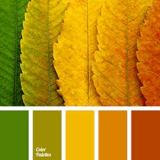 orange and color green and orange color palette ideas