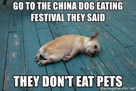 They Said Meme Generator - go to the china dog eating festival they said they don t eat pets