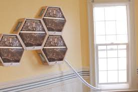 Hive Modular Design Ideas Beecosystem Modular Beehives Bring Beekeeping Indoors Curbed