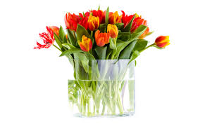 Flowers In Vases Pictures A Vase Of Flowers Flower Inspiration