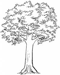 simple tree drawing drawing pencil