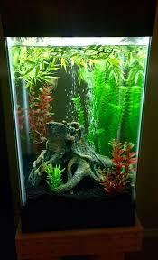 Aquarium Decoration Ideas Freshwater A Simple 15 Gallon Column Fish Tank Aquarium Decor Ideas