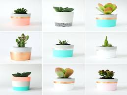 best plant for office best plants for office beautiful office design small office plant