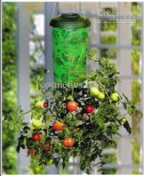 Upside Down Tomato Planter by 2017 Topsy Turvy Upside Down Tomato Vegetable Planter Mtv53 From