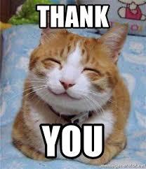 Kitty Meme Generator - kitty meme generator 28 images cat shat grumpy cat meme