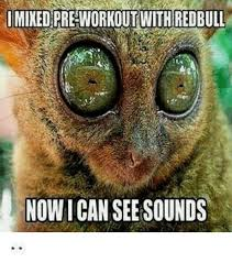 I Can See Sounds Meme - i mixed pre workout with redbull now i can see sounds redbull