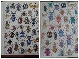 secret garden colouring book postcards 68 best images about secret garden colouring in on the