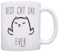 Cartoon Cat Memes - com funny cat gifts best cat dad ever rude cat lovers cat