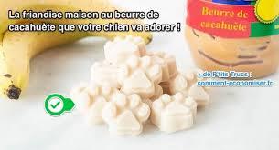 comment cuisiner du chien la friandise maison au beurre de cacahuète que votre chien va adorer