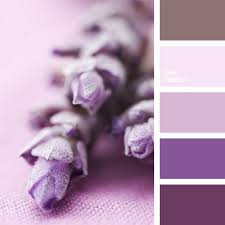 352 best lovely lavender rooms images on pinterest lavender