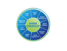 sap hana u0027s big data strategy zarantech