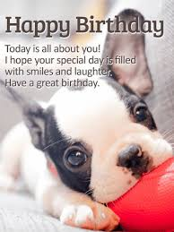 25 unique happy birthday puppy ideas on pinterest happy