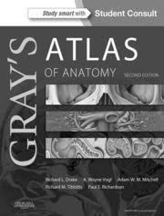 Netter Atlas Of Human Anatomy Online Atlas Of Human Anatomy Frank H Netter 6th Edition Free
