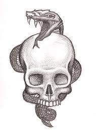 snake and skull idea by poortommy on deviantart