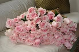 3 dozen roses s brocante you found 5 dozen pink roses left