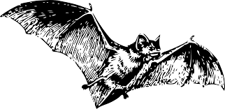 halloween png clipartist net clip art bat 2 halloween svg