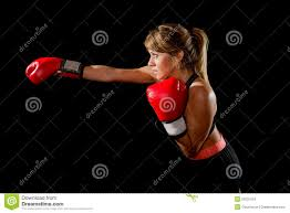 boxer dog in boxing gloves young fit and strong attractive boxer with red boxing gloves
