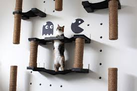 Wall Shelves For Cats The Pacman Cat Complex Catastrophic Creations