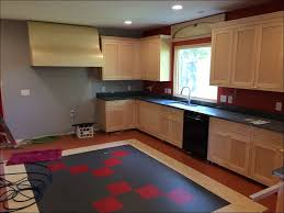 kitchen splendid cool best cream paint color for kitchen yeo lab
