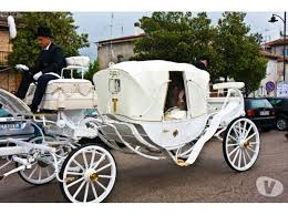 bianchi carrozze noleggio carrozze con cavalli bianchi per matrimoni pescara