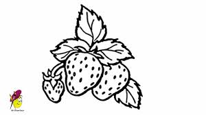 strawberry fruits and vegetables easy drawing how to draw