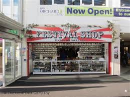 festival shop on dundas tattooing piercing in town centre