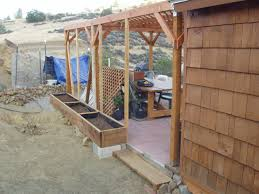 a grape vine trellis for the sangha shed of liza dzhensen and will