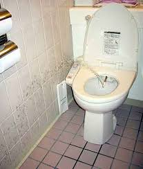 What Is A Bathroom Fixture What Is A Bidet The Sanitary Fixture Every Bathroom Needs