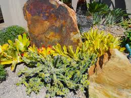 Rock Garden Plan by Deeter Buckner Design Cactus U0026 Succulent Gardens At Their Best