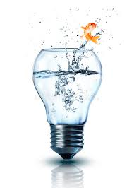 goldfish jumping out electric bulb stock photo image 38622920