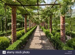 lucca tuscany italy garden of villa massei a brick pergola