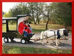 thanksgiving mini book southwest sky jewelry miniature horses and buggy