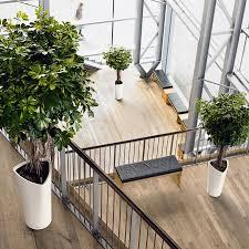 lechuza white all in one delta self watering planter