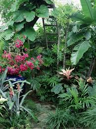 outstanding tropical style garden landscaping ideas and hardscape