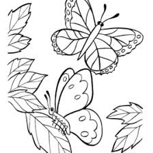zoo coloring book coloring pages literatured