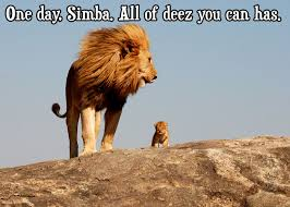 Lion King Meme - the cheezburger king the lion king know your meme