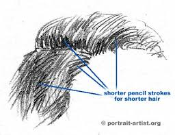 sketches of hair portrait art tutorial how to draw hair drawing hair on portraits